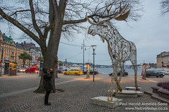 Giant Wooden Moose Statue In Stockholm, Sweden