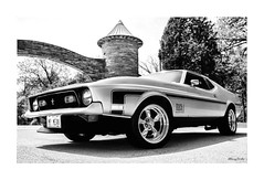 gate keeper (Stu Bo) Tags: 1sweetride 1ofakind 1971mustangmach1 ford musclecar mustanglust bnw beautiful blackandwhite bw sbimageworks shadows showcar scenery car idreamofcarsmotorsandhorsepower ilovemycar oldschool onewickedride 351cleveland ride rebel reflections worldcars warrior wheels wildrides certifiedcarcrazy classiccar coolcar canonwarrior custom sexonwheels grill goodtimes vintagecar vintageautomobile youjustdontseethiseveryday usa outdoor