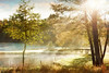Morning haze over the lake. (BirgittaSjostedt) Tags: lake nature water river field frost haze fog grass scene serene tree leaf sun bright light outdoor texture paint landscape mist birgittasjostedt magicunicornverybest ie