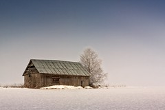 Foggy Morning On The Fields (k009034) Tags: 500px wooden copy space finland matkaniva oulainen tranquil scene agriculture architecture barn birch building countryside farming fields landscape nature no people old rural sky snow tree trees winter teamcanon