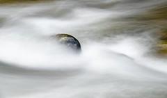 Linceuil blanc (Marc ALMECIJA) Tags: agout tarn eau water wasser rivière river rivers pose longue long exposure sony rx10 filé