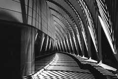 Calatrava-Series-lll (Richard Terpolilli) Tags: santiagocalatrava fineartblackwhitephotography fineartphotography blackandwhitefineartphotography architecture architecturalphotography imagesofbwarchitecture photography