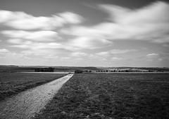 Landscape B&W #1 (terry@sevensixty images) Tags: landscape blackandwhite monochrome southoxfordshire canoneos760 nature longexposure ndfilter 10stopfilter