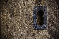 Sólo hierro y madera (Ignacio M. Jiménez) Tags: hierro iron madera wood metal ignaciomjiménez baeza jaen andalucia andalusia españa spain keyhole cerradura texturas textures