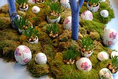 Easter eggs (halifaxlight) Tags: denmark copenhagen royalcopenhagen easter shop display eggs flowers bulbs moss decoration porcelain