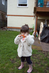 Lola2BD-22 (tonesXtones) Tags: arif bandali elsa leo lola penny rosie sheila tlell birthday paige