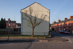 Excelsior Street (Gary Kinsman) Tags: victorian bathandnortheastsomerset bath 2017 canoneos5dmarkii canon5dmkii canon28mmf18 architecture side tree terrace terracedhouses excelsiorstreet end wall blank endofterrace sign urban urbanlandscape topographics newtopographics