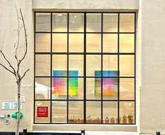 Framing (chantsign) Tags: window abstract art squares tree bare frame reflection wall street rectangle dumbo