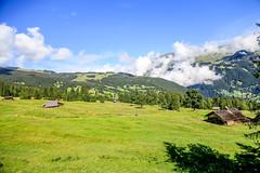 First_19Aug16_105530_40_6D-2 (AusKen) Tags: switzerland grindelwald bern ch