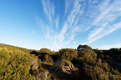 20170228-07-Camp (Roger T Wong) Tags: australia greatpinetier np nationalpark sel1635z sony1635 sonya7ii sonyalpha7ii sonyfe1635mmf4zaosscarlzeissvariotessart sonyilce7m2 tasmania wha wallsofjerusalem worldheritagearea bushwalk camp hike tent trektramp walk