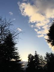 75/365: Morning Sky