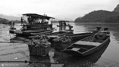 16-03-22 China (365) Guilin R01 BN (Nikobo3) Tags: asia china guilin rural social río agua people gentes culturas bn bw travel viajes nikon nikond800 d800 nikon247028 nikobo joségarcíacobo flickrtravelaward ngc paisajes