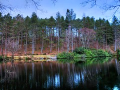 Glecoe Lochan Hues (Phelan (Shutter Clickin) Goodman) Tags: glencoe lochan trees water lake walk views trails nature scenic reflections islands woosland sky sunset hues vibrant scotland panasonic gx80 gx85