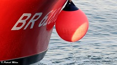 Red (patrick_milan) Tags: bateau ship boat voilier pêche sailing fishing iroise ocean port harbour quay quai buoyant buoy tugboat saariysqualitypictures hull bow rope cordage aussière accastillage bouée flotteur hublot porthole bout taquet latch poulie pulley réa palan cloche bell hawser compass hélice propeller rudder safran gouvernail snap hook mousqueton manille oarlock shackle ring anneau aberwrach yearend17