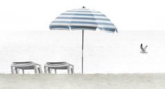 Chilly day. (Jill Bazeley) Tags: beach umbrella chair recliner lounger seagull gull cocoa space coast brevard county florida striped atlantic ocean nikon d7200 70300mm lori wilson park vr