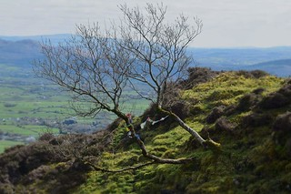 Knocknarea - view over Sligo