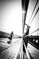 into the sun. (Jochem.Herremans) Tags: bam albertkanaal dendam blackandwhite bridge antwerpen antwerpennoord den2060 blackwhite architecture sunlight bike bw merksem fietsbrug