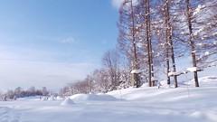 Niseko Hokkaido Ski Resort (mintsanddreams) Tags: niseko hokkaido ski skiing snow white japan nihon snowing resort hilton landscape snowboard snowboarding holiday