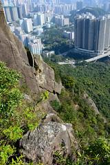 DSC_8522 (sch0705) Tags: hk hiking kowloonpeak standingeagleridge