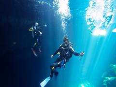 Tulum The Pit Cenote dive-3