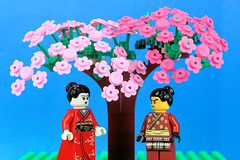 Under the Cherry Blossom Tree (Lesgo LEGO Foto!) Tags: lego minifig minifigs minifigure minifigures collectible collectable legophotography omg toy toys legography fun love cute coolminifig collectibleminifigures collectableminifigure cherryblossom sakura cherry blossom samurai samuraiwarrior warrior kimonogirl kimono girl