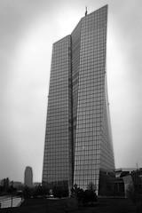 IMG_4251 (pappleany) Tags: pappleany outdoor architektur frankfurtammain ezb ezbtower hochhaus bank sw bw