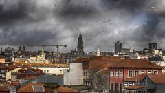 Les oiseaux - Remake ! (Fred&rique) Tags: lumixfz1000 photoshop raw hdr toits porto portugal ville oiseaux ciel nuages clochers églises cathédrale grue