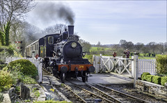 Kent & East Sussex Railway - Tenterden (Elaine 55.) Tags: heritage railways kenteastsussex train steam engine levelcrossing