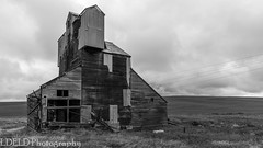 NT3.0033-CW1605618_38665 (LDELD) Tags: palouse pullman washington unitedstates us old abandoned agricultural building grainery fallingdown granary