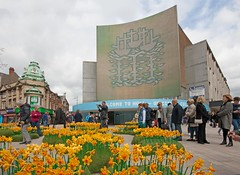 Lego Daffodils (mark_fr) Tags: maritime museum lego daffodils the weeping window hull city culture 2017 east yorks yorkshire north humberside humber estuary river bhs british home stores amy johnsons tiger moth paragon station interchange