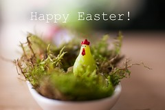 [15/52] Happy Easter! (Pantalymon) Tags: happy easter chicken moss decoration decor candle 50mm macro bokeh 52 weeks project