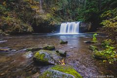 Butte Creek Falls (Colleen Easley) Tags: waterfall buttecreekfalls