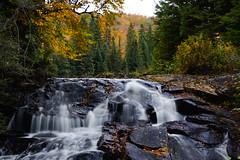 Haliburton wildlife forrest ont canada (Wil James) Tags: fall waterfalls haliburton sonya77