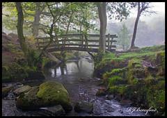 Mystic River (Richard Beresford) Tags: autumn mist derbyshire peakdistrict padley