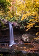 Cucumber Falls Autumn (kgrunt2006) Tags: autumn leaves forest river waterfall woods pregame ohiopyle laurelhighlands gamewinner pregamesweep