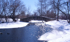 "Snowy Tenney Park bridge • <a style=""font-size:0.8em;"" href=""http://www.flickr.com/photos/34843984@N07/15360742697/"" target=""_blank"">View on Flickr</a>"