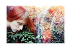 , (Benedetta Falugi) Tags: red woman plant green film hair analogue fujisuperia 800iso shootingfilm istillshootfilm wwwbenedettafalugicom marilebones beliveinfilm benedetafalugi