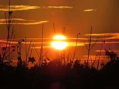 00710724 Sunset (golli43) Tags: sunset oktober sun streets rain sunrise heaven himmel wolken neighbours sonne nachbarn homesweethome regen spaziergnge streetlive