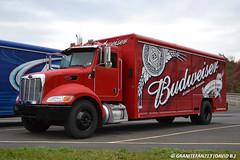 2009 Peterbilt 337 Beverage Truck (1) (Trucks, Buses, & Trains by granitefan713) Tags: budlight budweiser peterbilt deliverytruck beertruck peterbilttruck beveragetruck peterbilt337