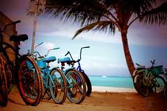 Hawaii (mellamoangee) Tags: beach clouds palms hawaii sand bikes palmtree honolulu