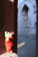 The Travels of Car Bear (6) (Blue Pelican) Tags: bear abbey scotland teddy monastery dryburgh