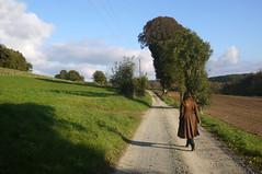 J. et le grand tilleul — Bretoncelles, Orne, Basse-Normandie, 26 octobre 2014 (Stéphane Bily) Tags: portrait path country her ja campagne youngwoman chemin jeunefille orne bassenormandie bretoncelles stéphanebily