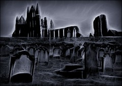 Dracula's arrival point in England, Halloween, Whitby (robin denton) Tags: blackandwhite bw halloween abbey graveyard cat blackcat mono blackwhite vampire yorkshire ghost gothic goth dracula spooky whitby churchyard tombstones northyorkshire stmarys redfield spooks sthildas allhallowseve abbeyruins bramstoker fractalius