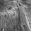 Rigi-Panorama (ghatiso) Tags: wood panorama mountain schweiz switzerland nebel luzern holz rinde lucern iphone rigi baumstamm xls nebeldecke stuktur