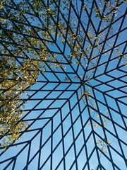 At the New York Botanical Garden (pburka) Tags: sky geometric gardening trellis parallelogram