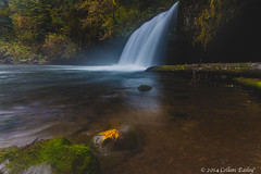 Butte Creek Falls (Colleen Easley) Tags: waterfall buttecreekfalls