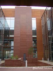 madera-para-edificios-tratada