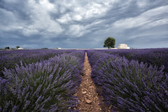 [explore] provence, aproaching storm (def357) Tags: