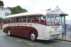 WND477 (Adrian's Transport Photos) Tags: manchester cub tiger alpine 1958 spencer llandudno leyland brittania 2014 bodied duple wnd477 llandudnos
