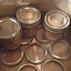 "I have spent a lot of time canning in the farmhouse kitchen this week. Yesterday, I realized that I hadn't shared my improvised canning rack with you. Let's fix that right away!  I have never loved the rack that came with my canning pot. The jars don't st • <a style=""font-size:0.8em;"" href=""http://www.flickr.com/photos/54958436@N05/15601860501/"" target=""_blank"">View on Flickr</a>"